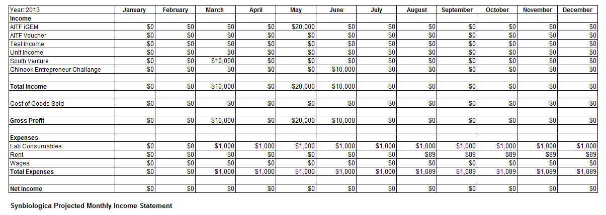 Monthly Income Statement Excel