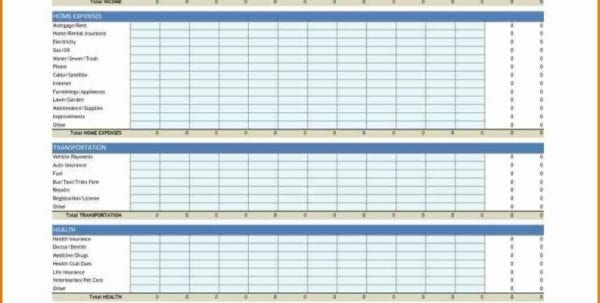 Daily Budget Spreadsheet Template
