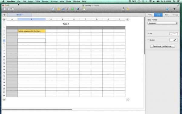 Excel Spreadsheet For Business Expenses