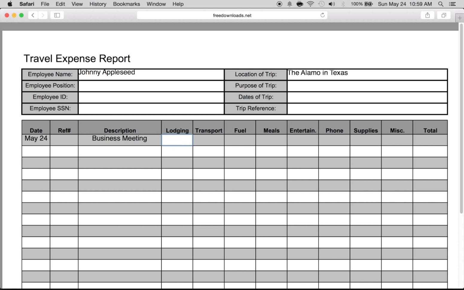 Travel Expense Report Template 1