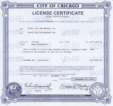 Llc Business License